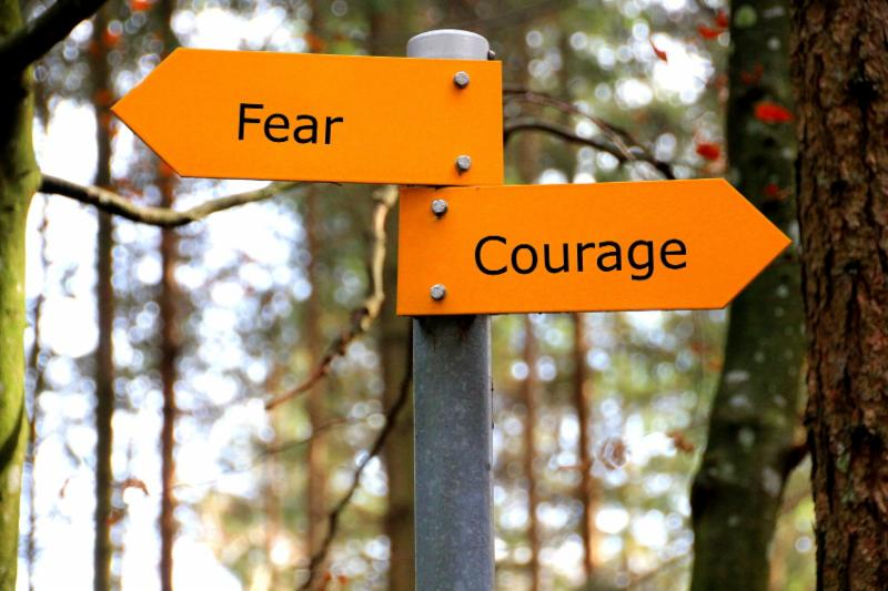 Don't Conquer Fear, Master Courage